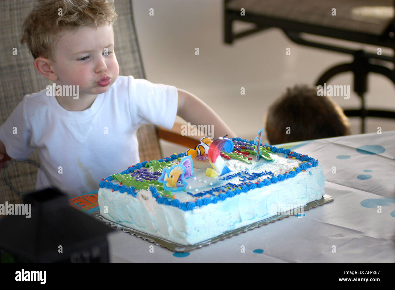 Child Having His 2nd Birthday Party A Boy