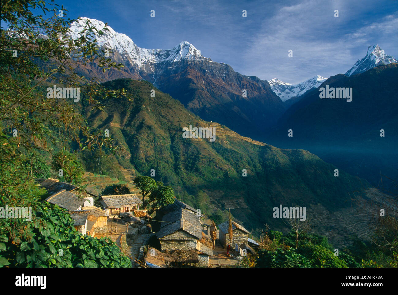 Farmstead in Ghandruk the Annpurna Himalaya Annapurna Ieft Machhauchhre right Nepal - Stock Image