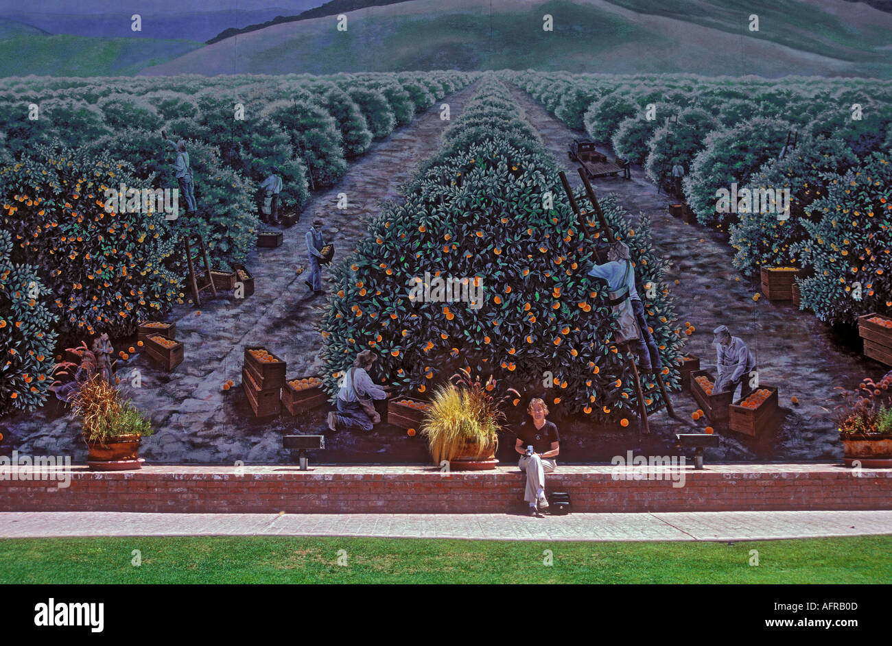 Mural of orange groves and growers on the side of a shop at Exeter City California USA - Stock Image