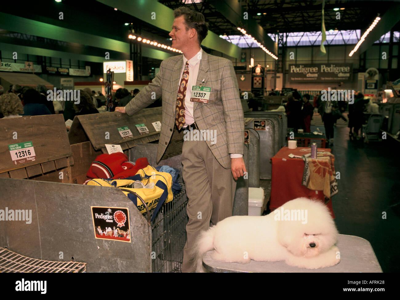 CRUFTS DOG SHOW BICHON FRISES PET DOGS 1980s UK HOMER SYKES - Stock Image