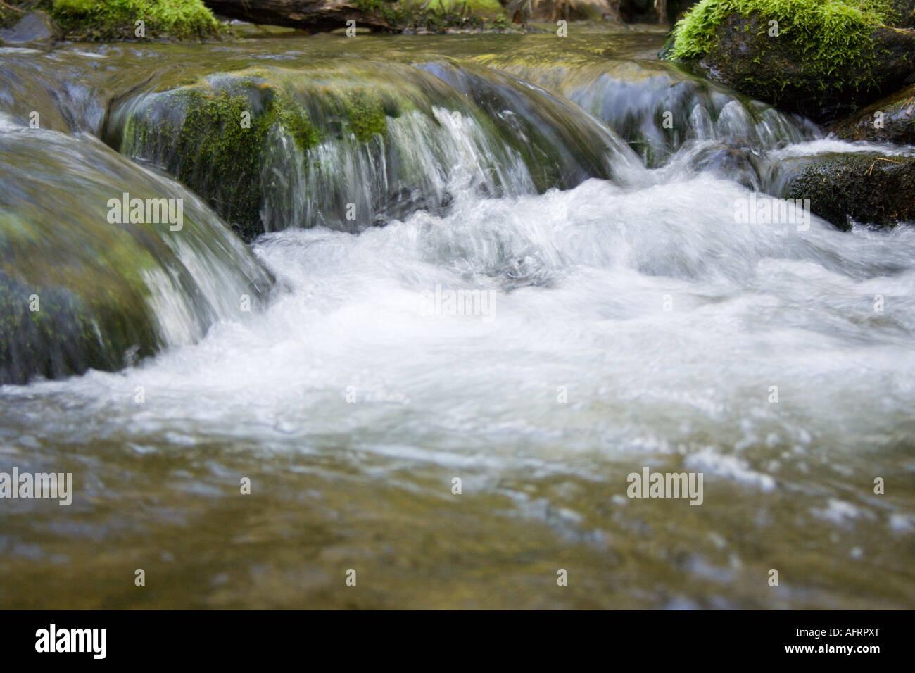 mountain stream running over mossy rocks in siberia - Stock Image