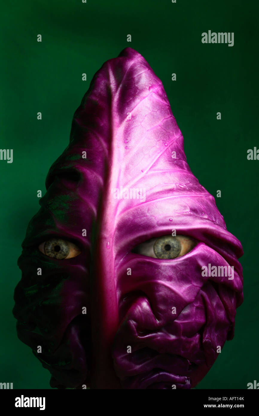 Surreal Alien Red Cabbage Face. - Stock Image