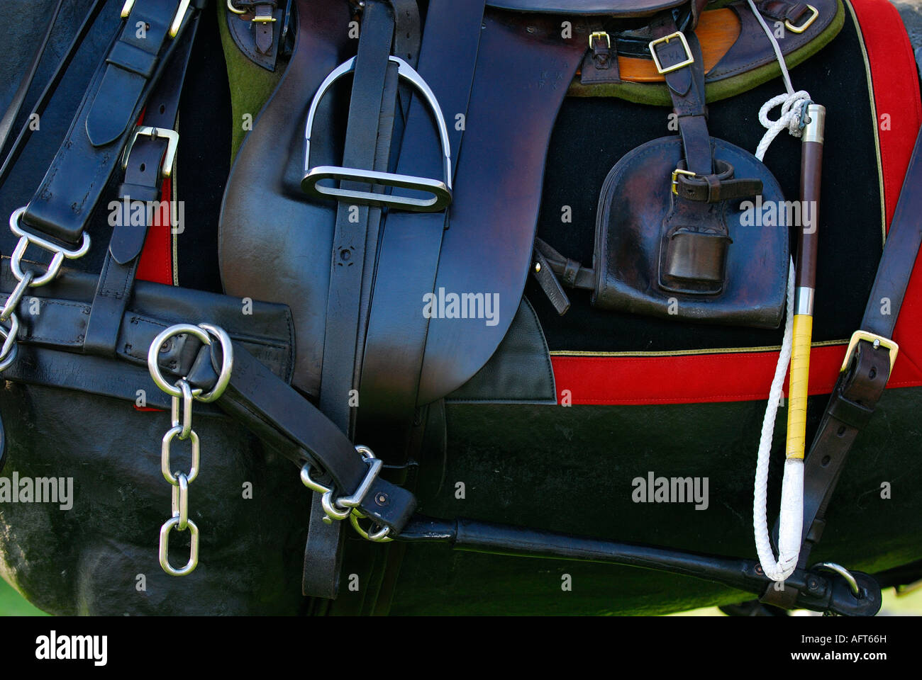 horse tack stirrups saddle bridle girth and appendages on a horse of the kings troop royal horse artillery on ceremonial - Stock Image