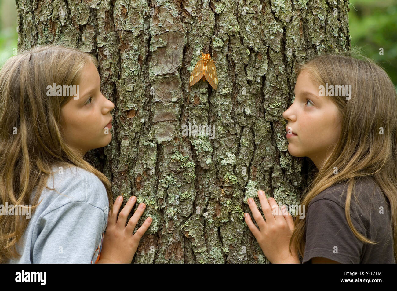 Twin Girls observing Black Royal Walnut Moth  Deciduous forest E USA, by Bill Lea/Dembinsky Photo Assoc - Stock Image