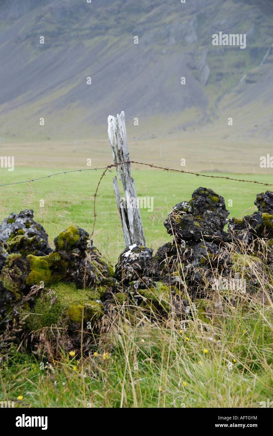 fence post and lava wall near Búðir Snaefellsnes Iceland Stock Photo