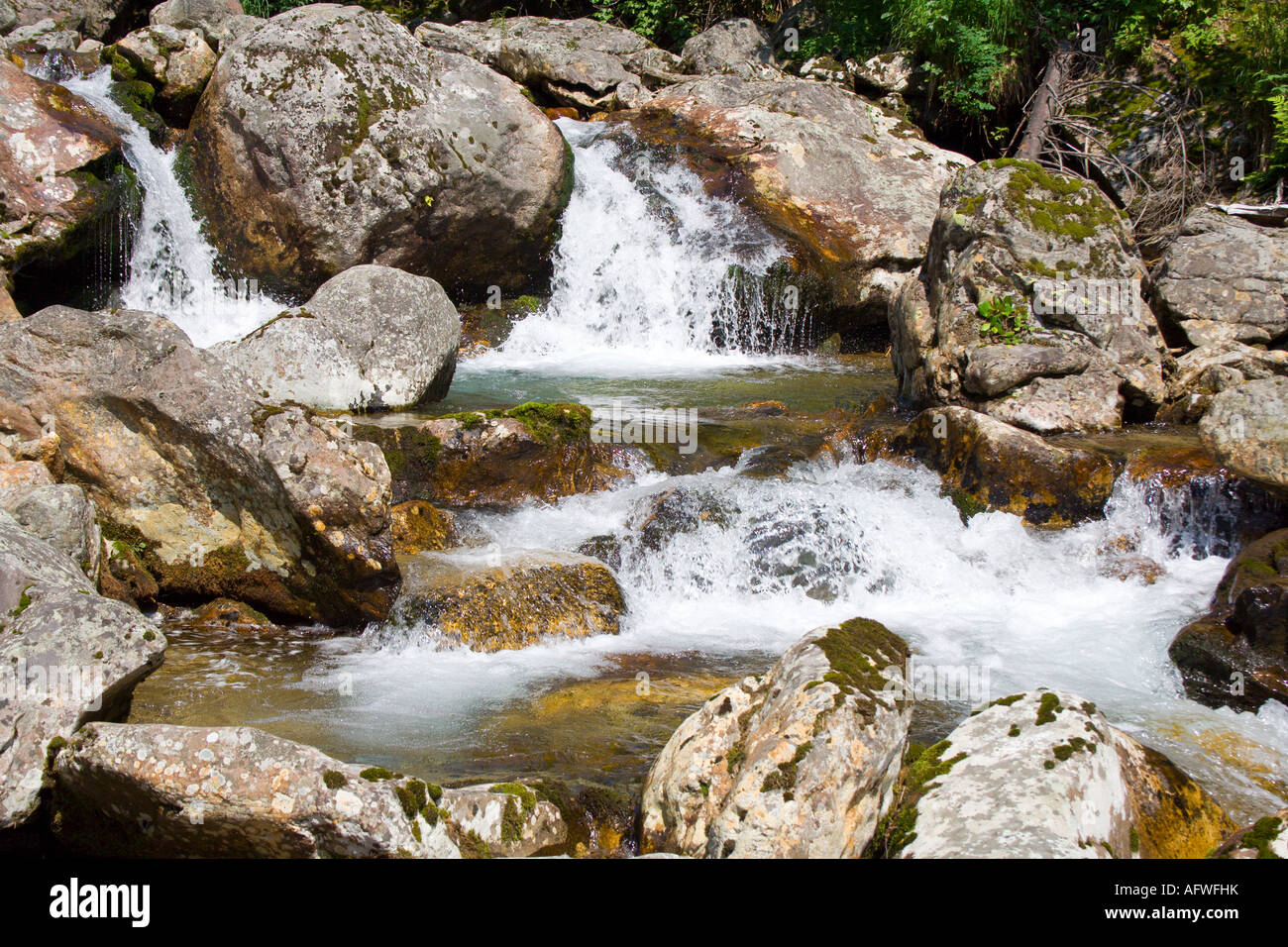 mountain stream running over mossy rocks in siberia foothills of Sayan s mountain range - Stock Image