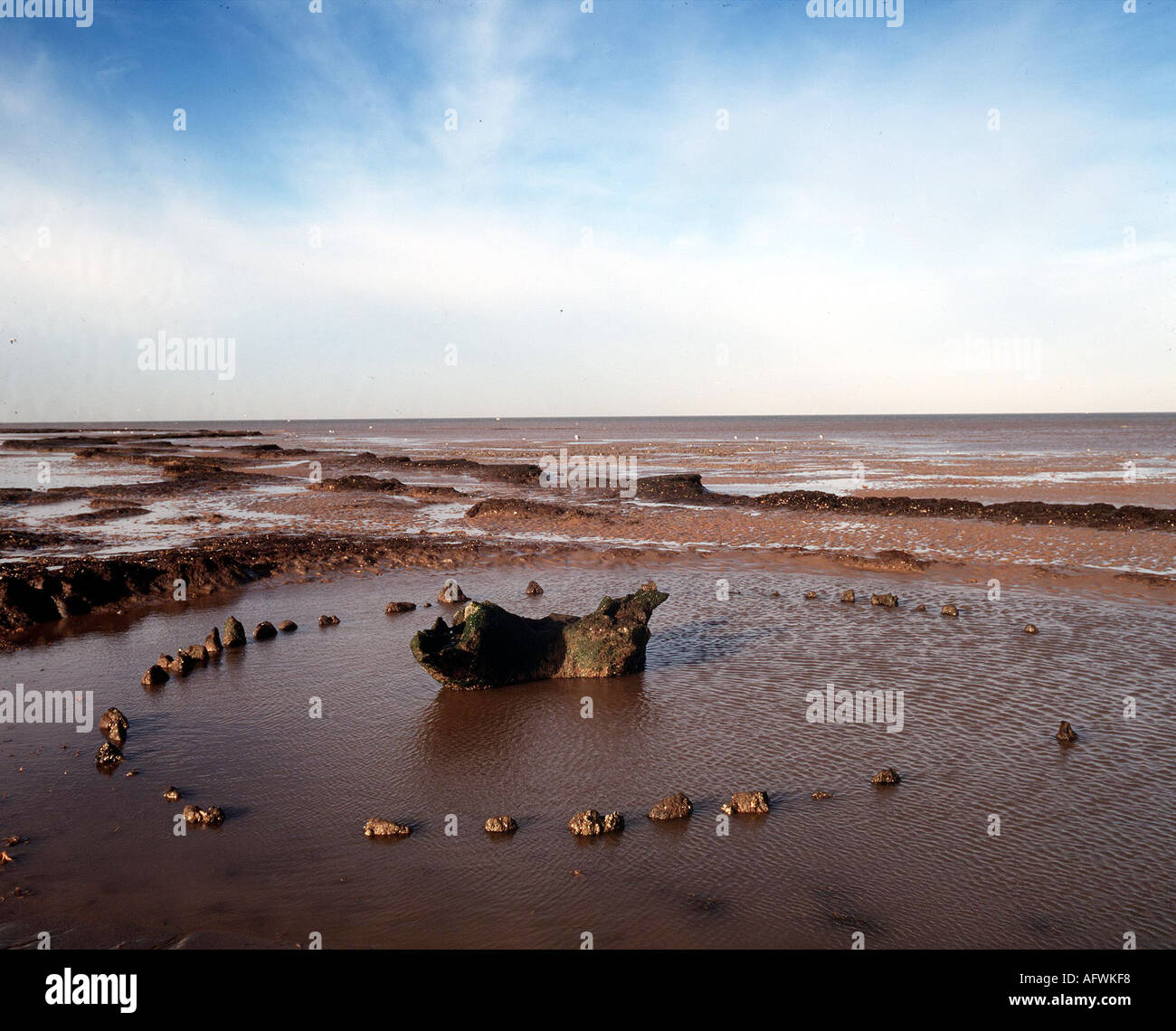 Seahenge a bronze age timber wooden circle at Holme next the sea North Norfolk.   HOMER SYKES - Stock Image