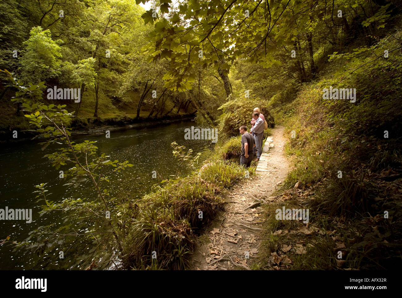 three people walking on the woodland path by the River Teify Tivy Cenarth Ceredigion Wales summer 2007 UK Stock Photo