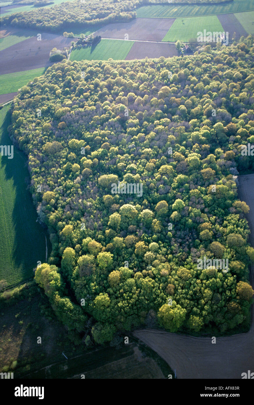 aerial view ,aerien,aerial,vue aerienne,forets yonne/loiret france - Stock Image
