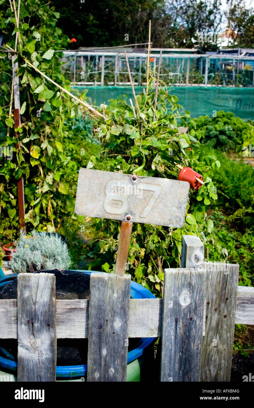 Plot numer on an allotment - Stock Image