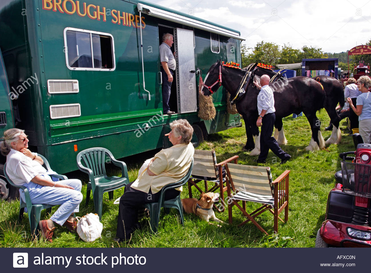 [DIAGRAM_5FD]  Behind the scenes, relaxing before preparing the harness of Shire Stock  Photo - Alamy | Behind The Scenes Harness |  | Alamy