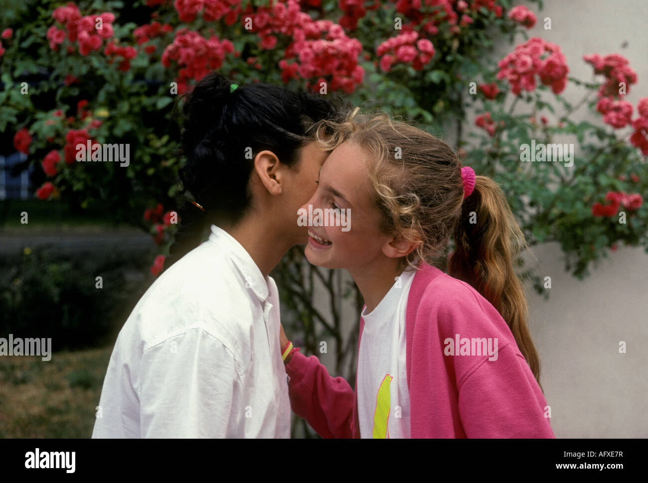 Greeting kiss friends stock photos greeting kiss friends stock two french girls french girls friends greeting kissing hello kiss on m4hsunfo