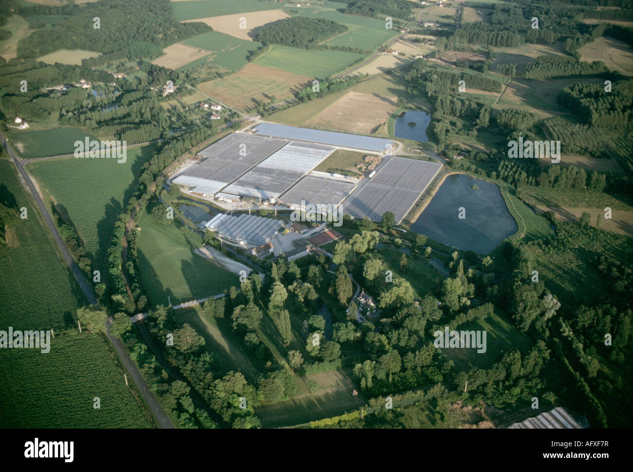 aerial view ,aerien,aerial,vue aerienne,  serre de culture douchy loiret france Stock Photo