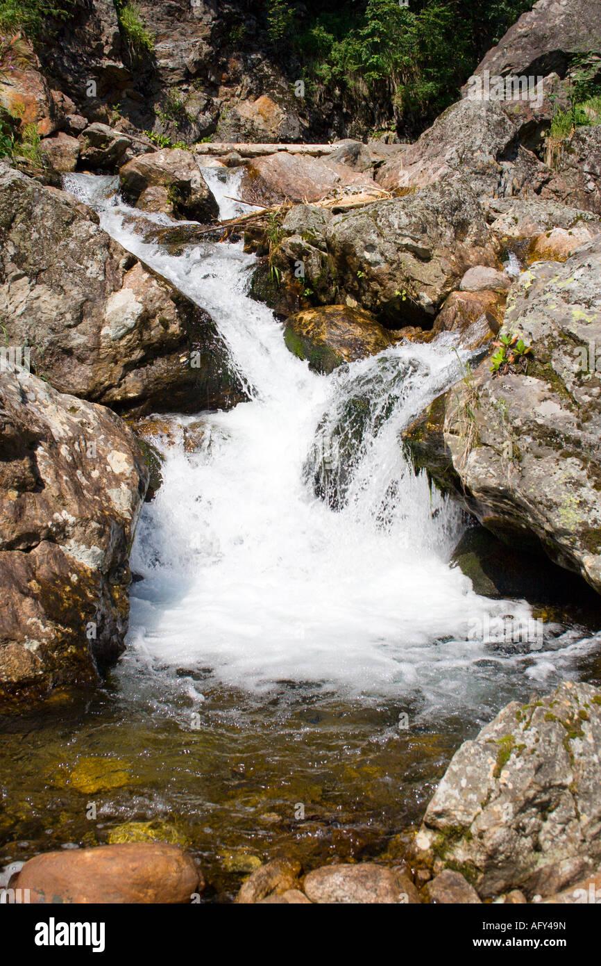 mountain stream running over mossy rocks - Stock Image