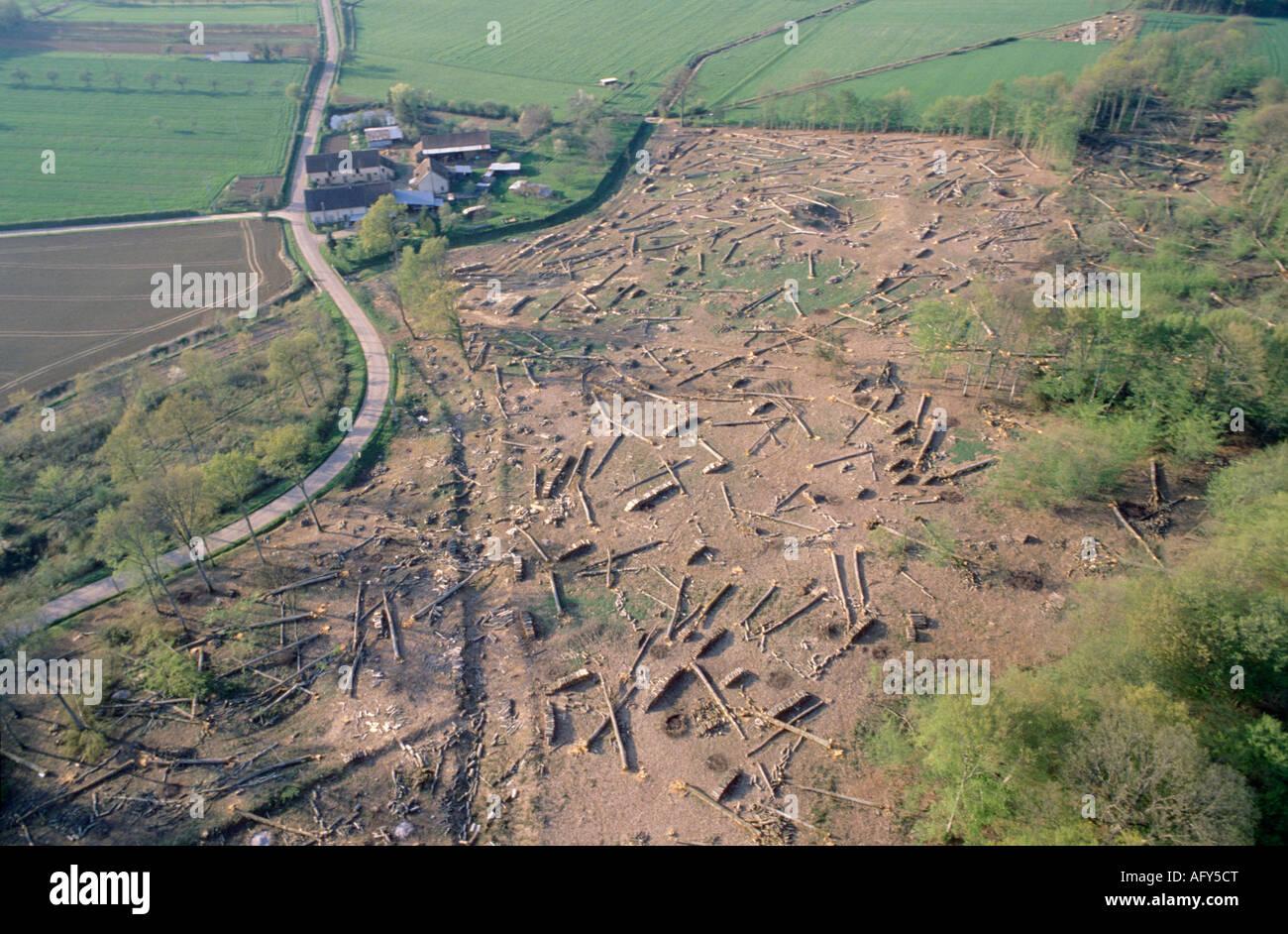 aerial view ,aerien,aerial,vue aerienne,coupe de bois de chauffage loiret france - Stock Image