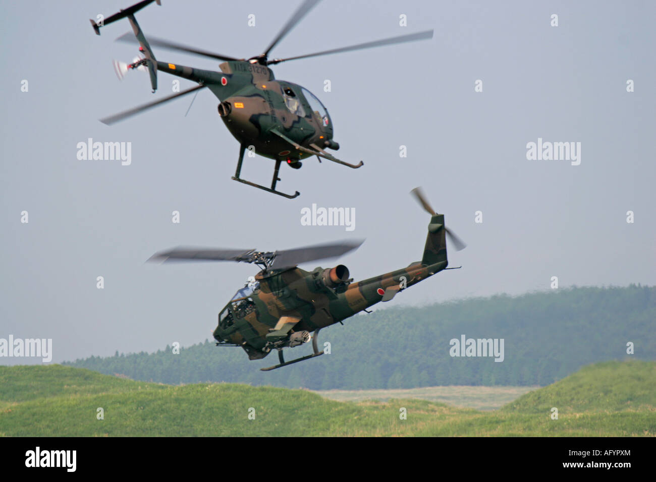 OH-6 Cayuse and AH-1 Cobra Helicopters of Japan Ground Self Defence Force are maneuvering in the sky - Stock Image