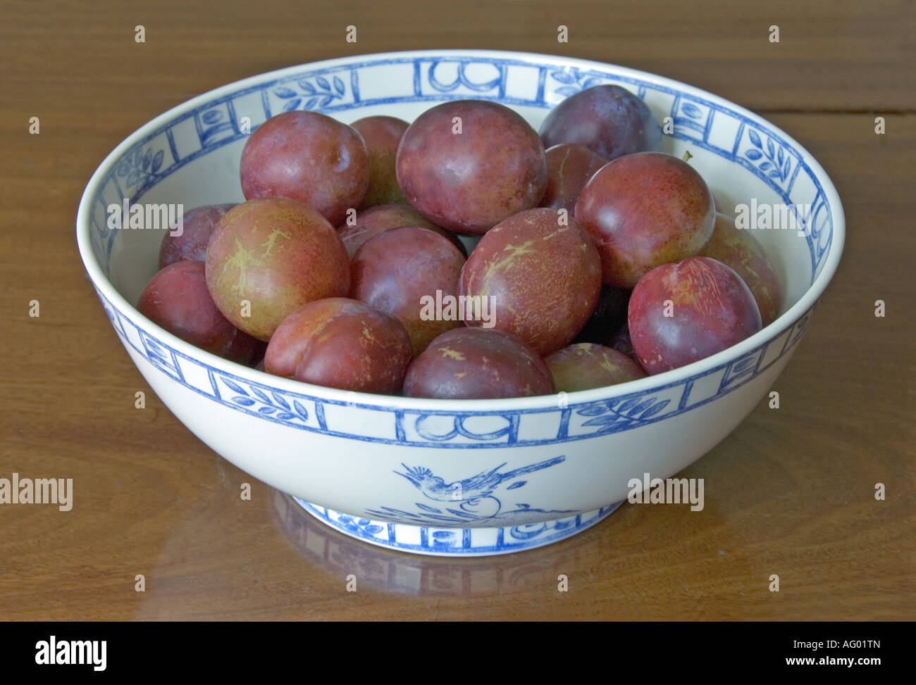 Marjorie s Seedling plums in a French Porcelain bowl - Stock Image