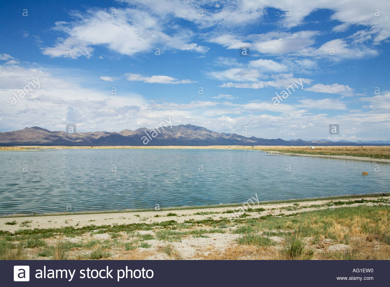 Willcox Waste Water recharge pond also called Lake Cochise - Stock Image