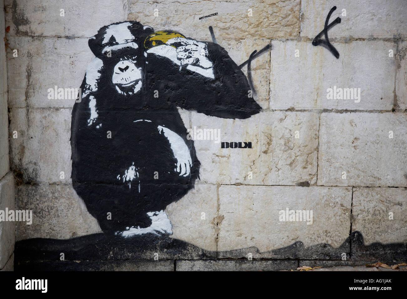 Art Graffiti With Monkey