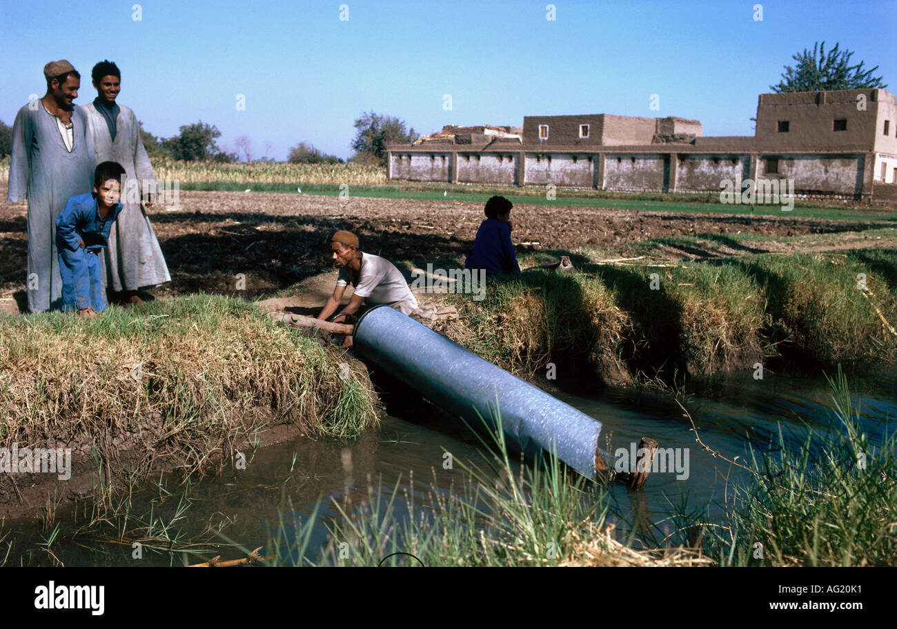 Features of irrigational agriculture in ancient Egypt 77