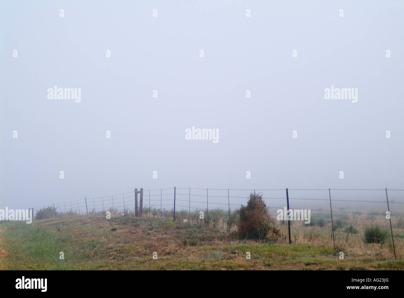 A barbed wire farm fence appears as the cold early morning mist warms in the sun - Stock Image