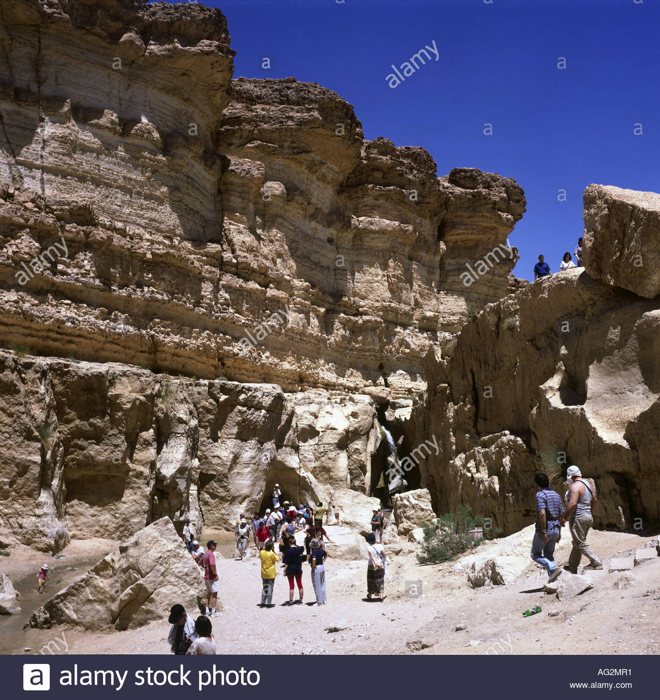 geography / travel, Tunesia, landscape / landscapes, oasis Tamerza, , Additional-Rights-Clearance-Info-Not-Available - Stock Image