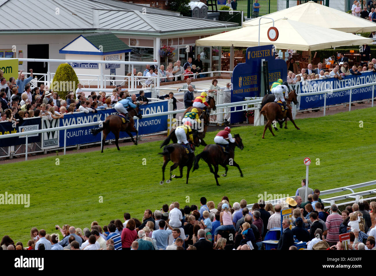 Racehorses at Chester Race meeting England UK July 2005 - Stock Image