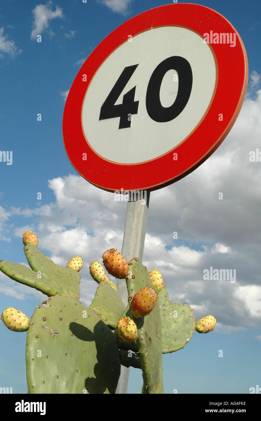 Cactus Highway - Stock Image