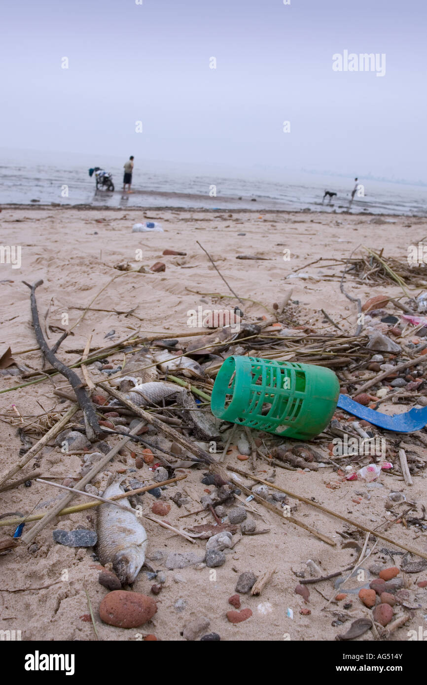 A Polluted Beach - Stock Image