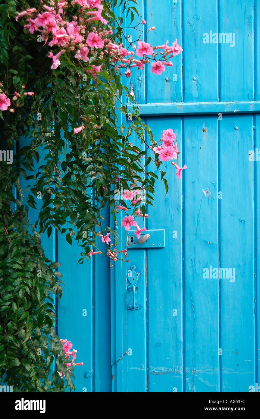 Blue Gate And Pink Flowers Brittany France Stock Photo 1070065