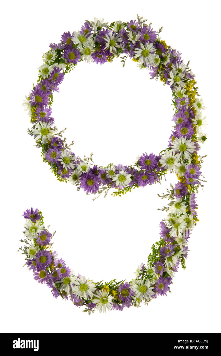 Number Nine In A Purple And White Flower Font - Stock Image
