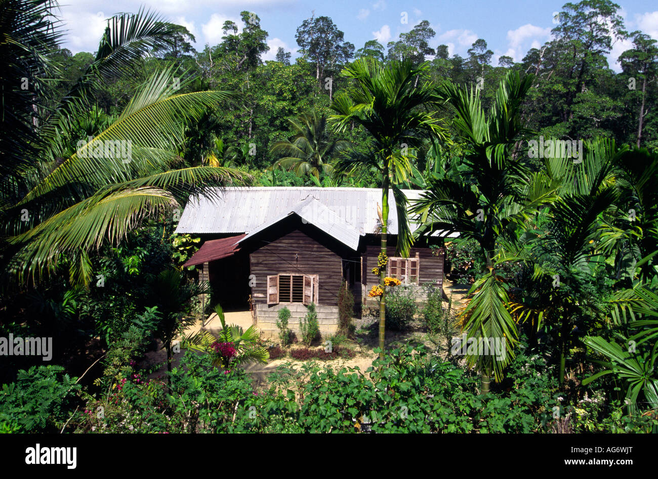 India Middle Andaman Island Betapur Small House In Verdant Garden Stock Photo Alamy