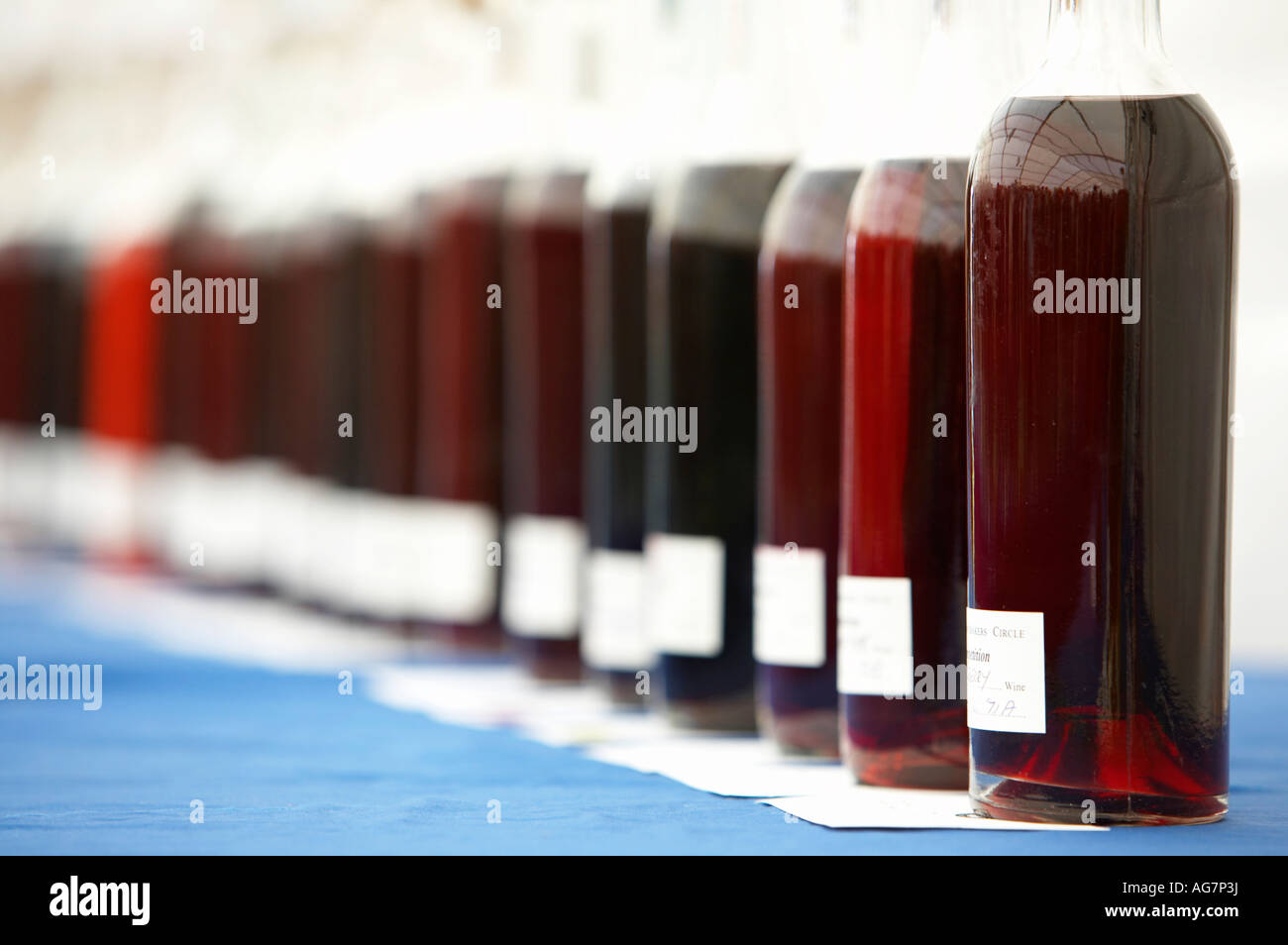 labels and bottoms of glass bottles of home made wine in a row for judging purposes - Stock Image