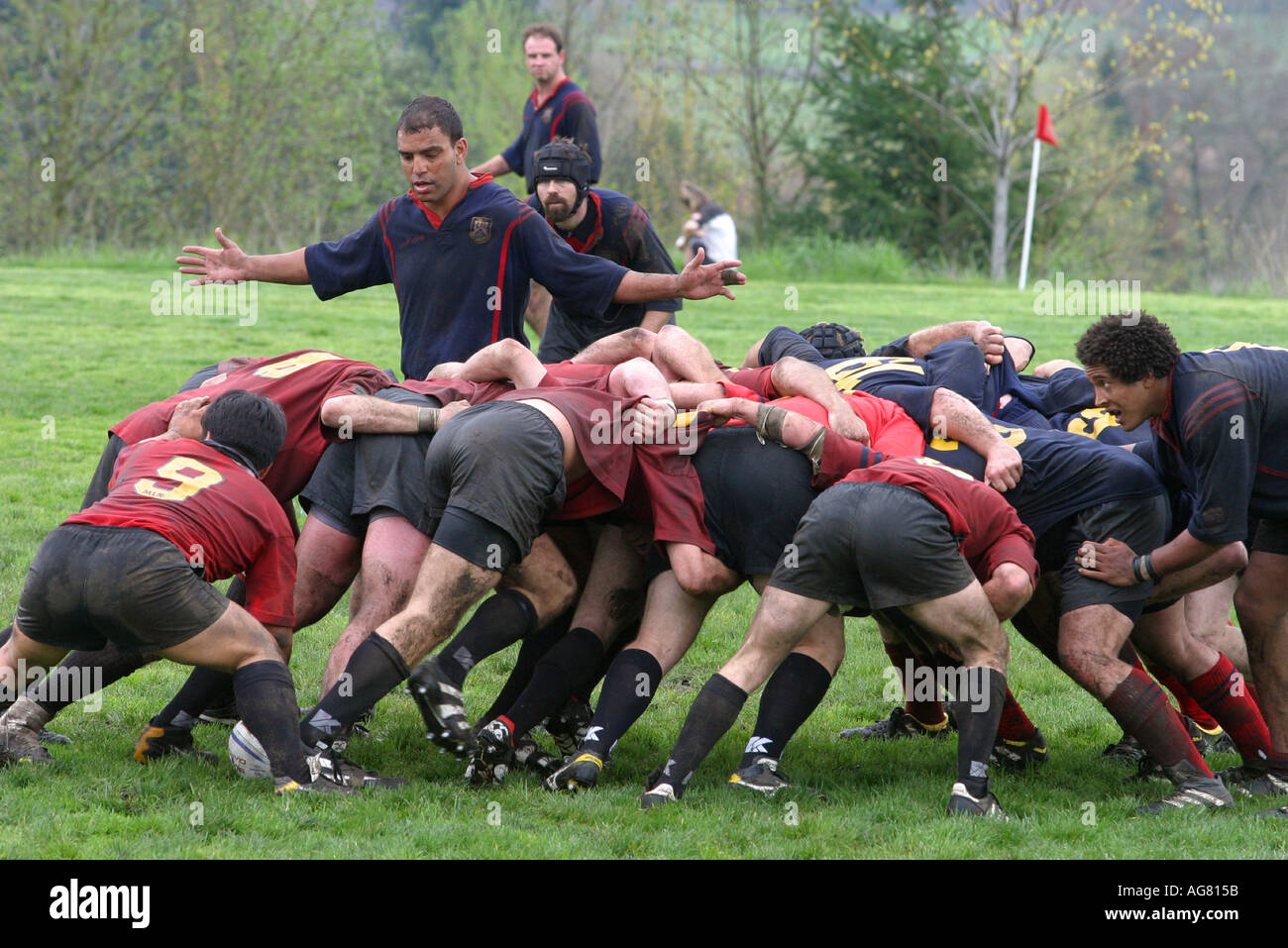 A men s rugby game in action during the scrum as players fight for the ball at a game in Oregon Stock Photo