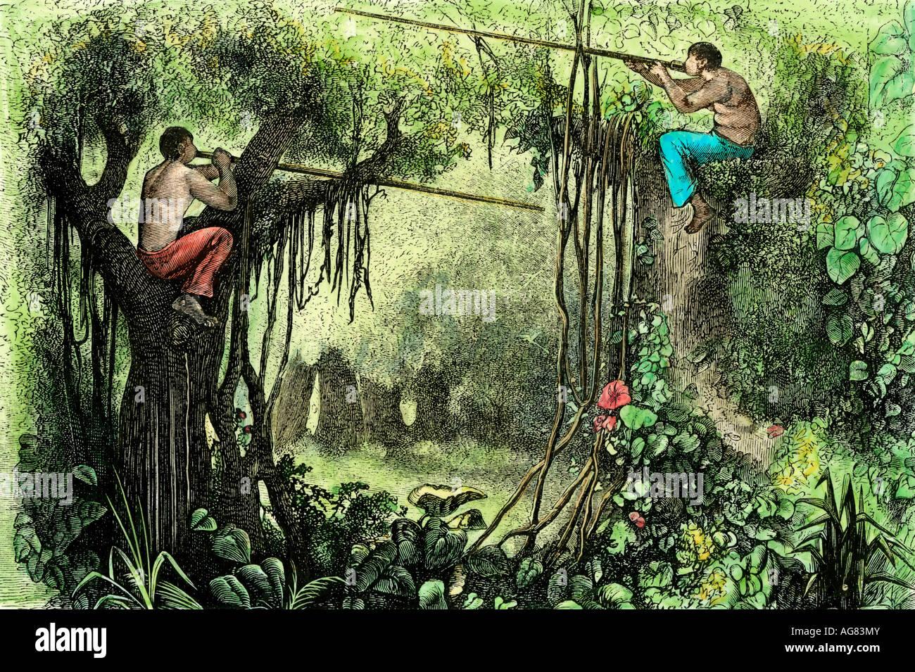 Brazillian natives hunting with poison blow guns Amazon basin - Stock Image f120b0f652377