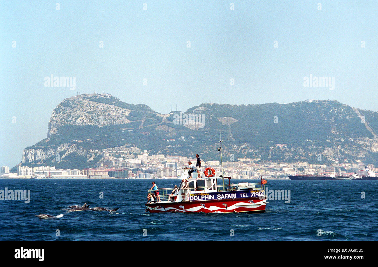 Dolphins break the surface in front of a tourist boat with Gibraltar in the background - Stock Image