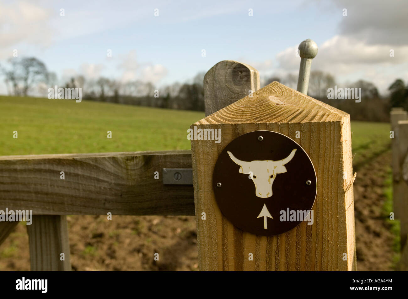 Beware of the Bull warning sign on country footpath Wales UK 2007 - Stock Image