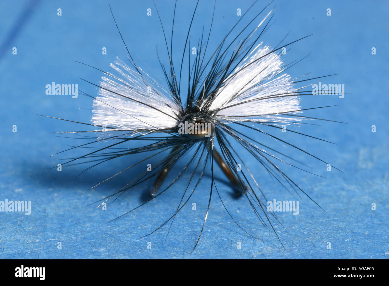 fishing fly fly fishing tying lure bait fish artificial Stock Photo