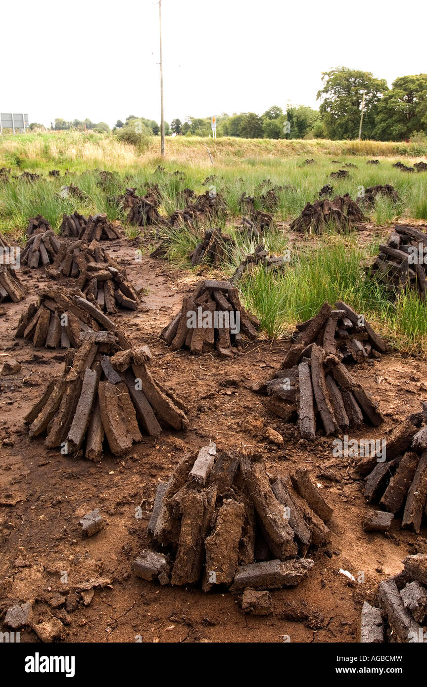 Ireland's common heating energy source: cut peat fuel most commonly called turf. - Stock Image