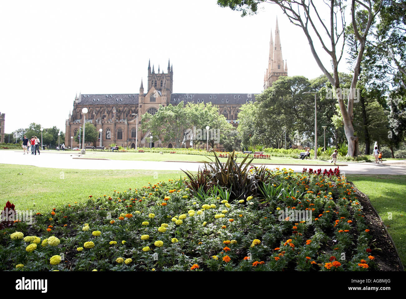 St Mary s Cathedral with gardens of Hyde Park in Sydney New South Wales NSW Australia - Stock Image