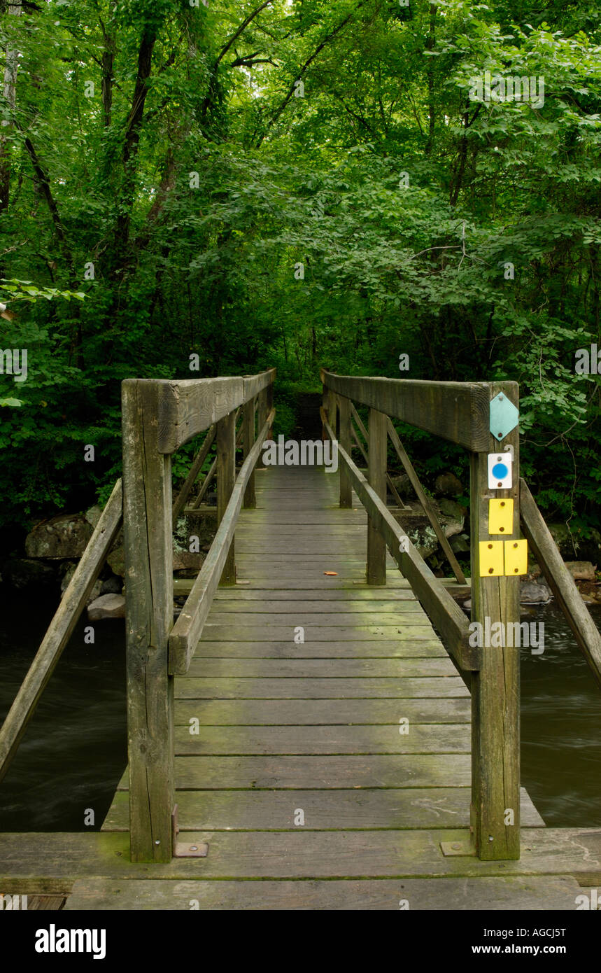 """Hiking trail crossing a stream """"New Jersey"""" Highlands region Stock Photo"""