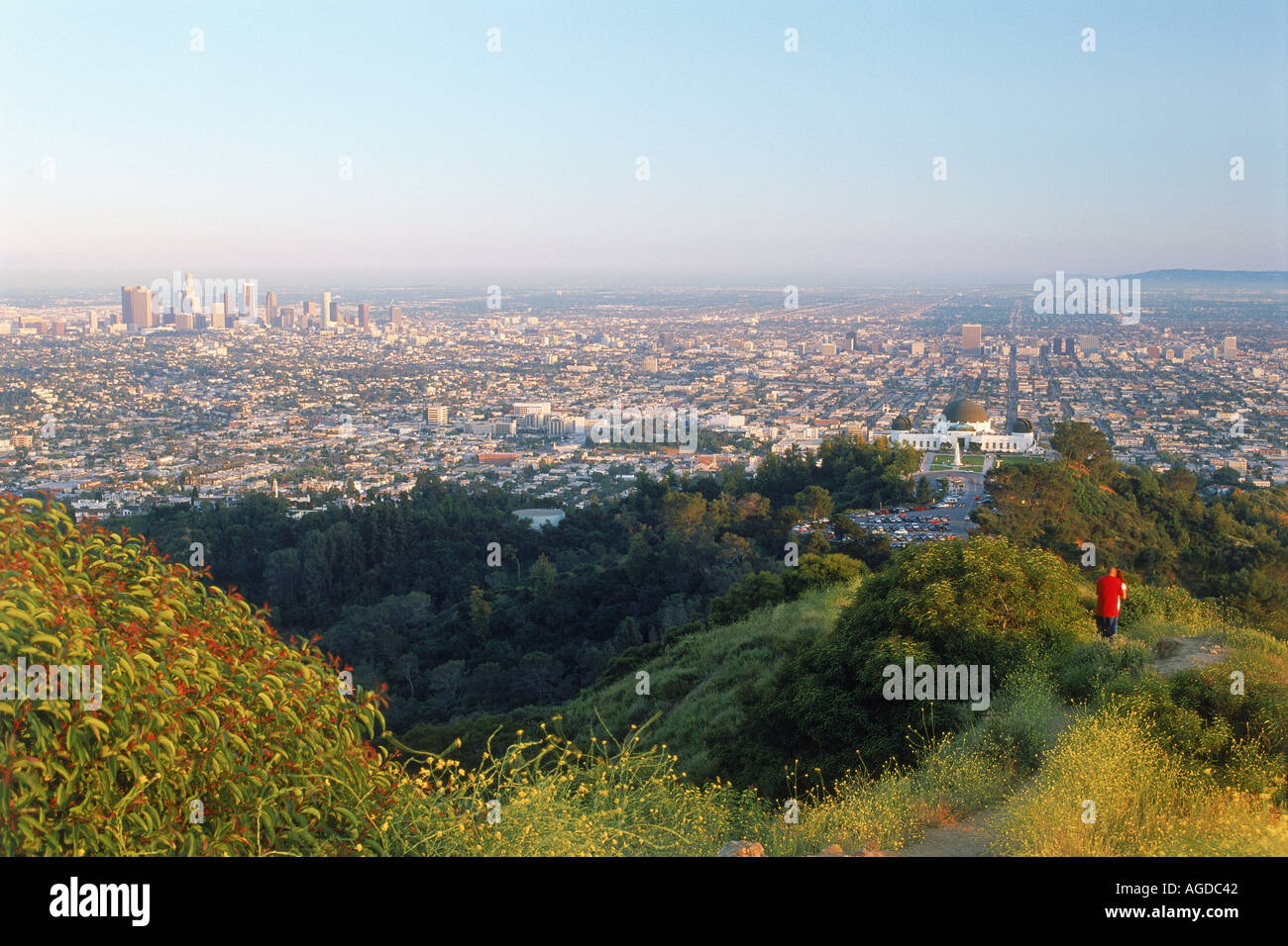 Overview of Los Angeles urban sprawl from above Griffith Park Observatory - Stock Image