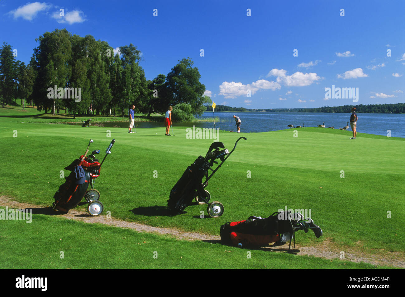 Golf carts and players on Taby Golf Course green near Stockholm in Sweden - Stock Image