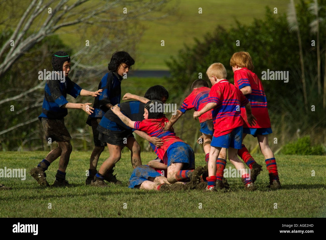 Maori Children Rugby New Zealand High Resolution Stock Photography And Images Alamy