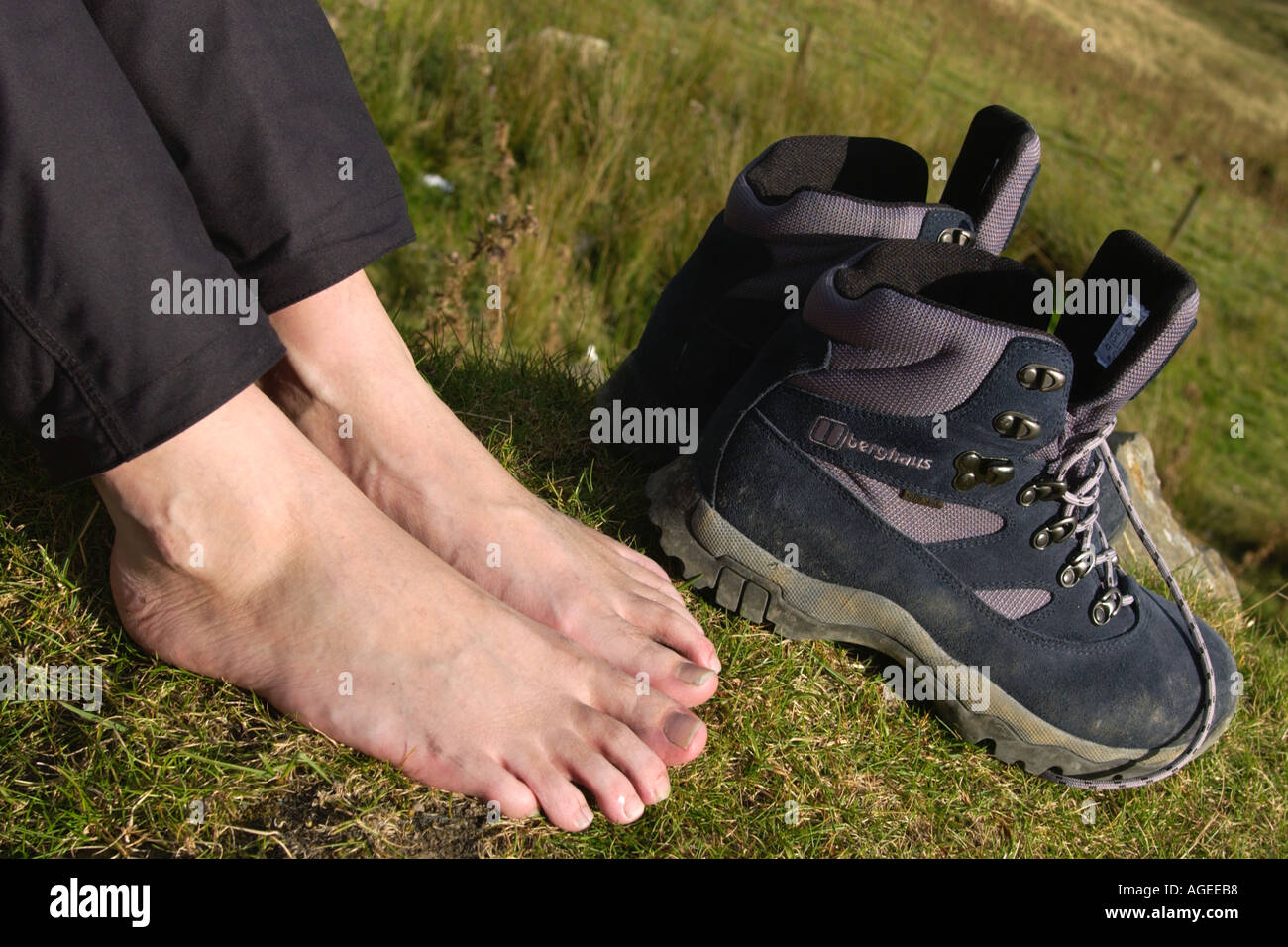 4eae8a3fa80 Close up of feet and Berghaus walking boots after hike in Snowdonia ...
