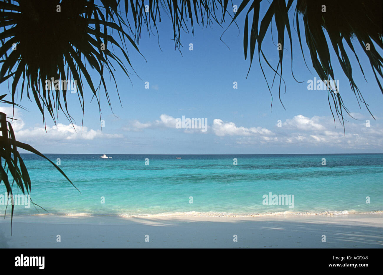 Palm framed scenic of the turquoise waters off Nungwi Unguja Zanzibar Tanzania East Africa - Stock Image