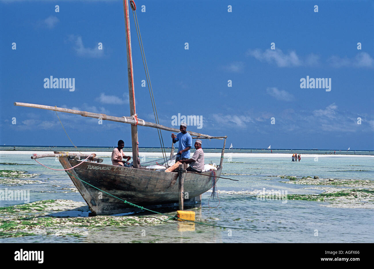 Crew of fishermen tending to their nets at low tide Nungwi Zanzibar Tanzania East Africa - Stock Image