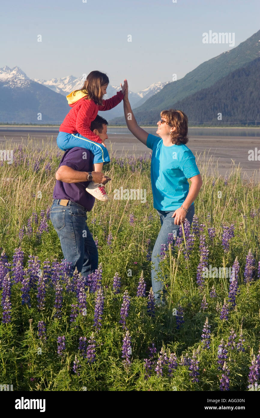 Family hiking in field of lupine along Turngain Arm Southcentral Alaska Summer - Stock Image