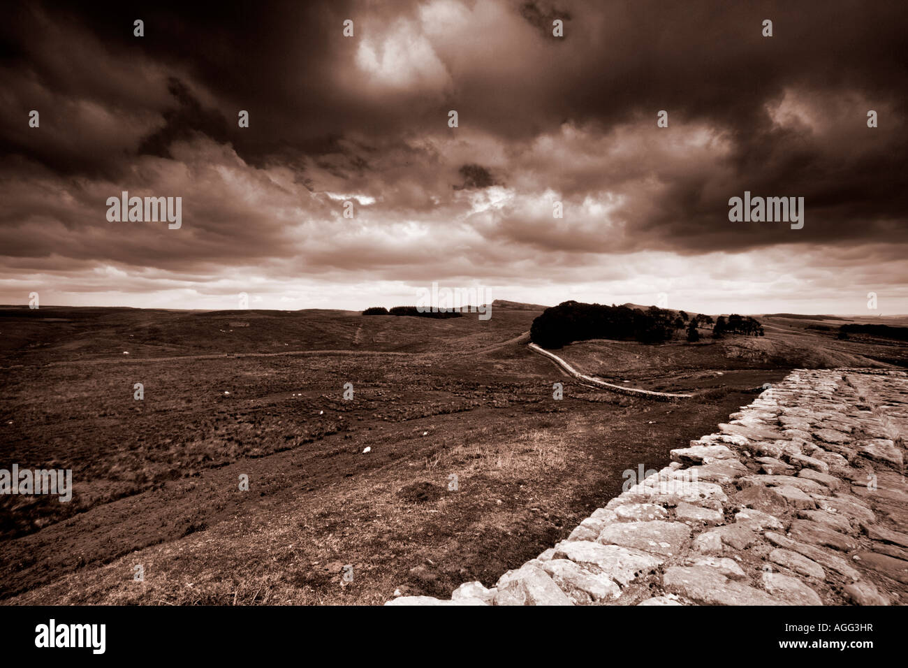 Sepia Image of Housesteads Fort, Hadrian's Wall, Northumberland, UK - Stock Image