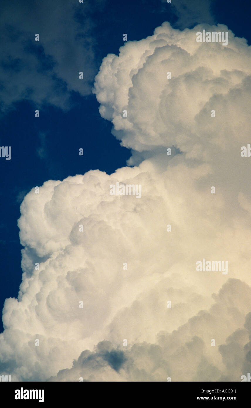 Cumulus congestus clouds Western USA - Stock Image